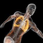 Claves  de  la  respiración  deportiva